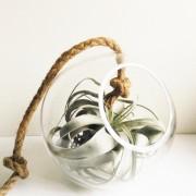 Bolvaas glas aan touw d.24cm