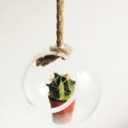 Bolvaas glas aan touw d.15cm