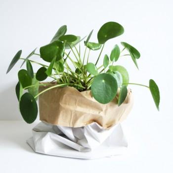 Papierzak craft/ wit 53 cm hoog