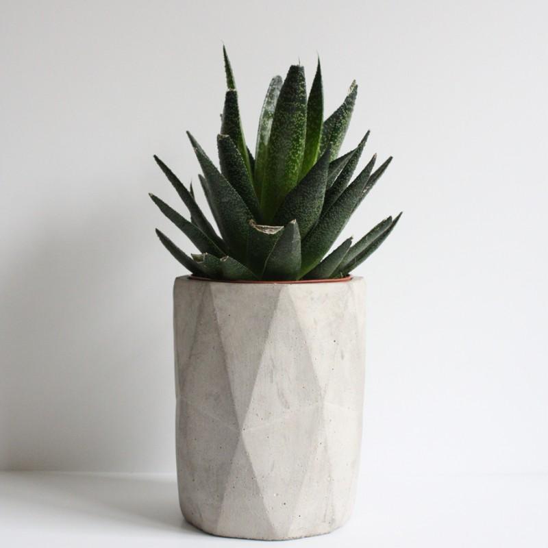 Pot beton bouwmaterialen - Cache pot beton ...
