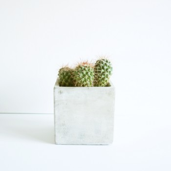 Pot beton vierkant 10 x 10 x 10cm.