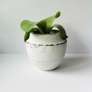 Pot keramiek wit d.15 x 14,5 cm.hoog